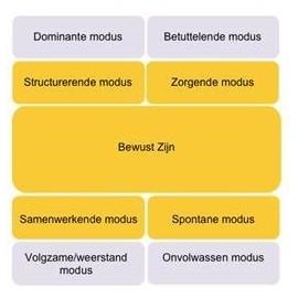 Digitale leermodule Functional Fluency