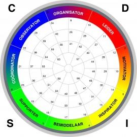 DISC gedragsanalyse