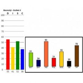 DISC Benelux Gedrag en Drijfveren combinatieanalyse